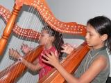 Instrumentos música llanera